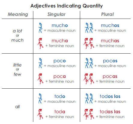 Spanish quantifiers: mucho, poco, todo
