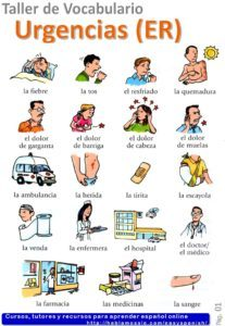 ER in Spanish, vocabulary with quizzes